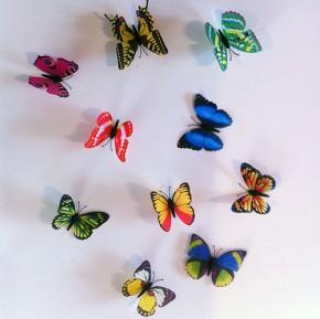 Fluturi 3D Multicolori - Fluturi 3D