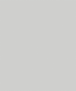 Placa din fibrociment [pictura] - Placa din fibrociment-pictura