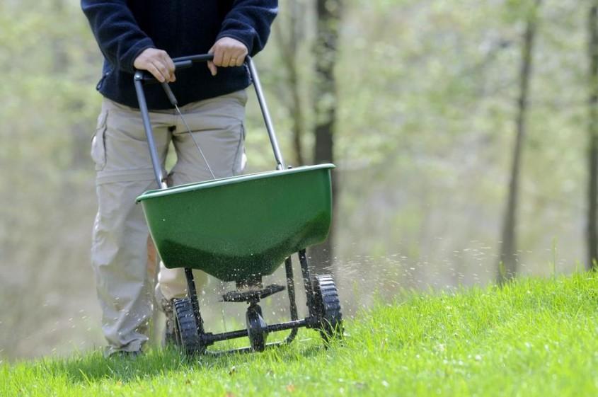 Fertilizarea gazonului - afla de ce cand si cum sa o faci - Fertilizarea gazonului -