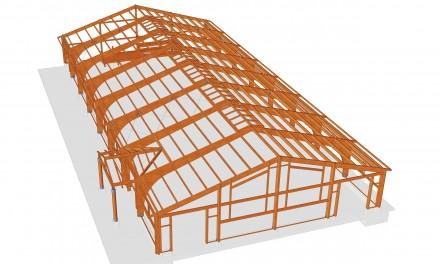 Proiect Manej - Proiectare structuri de lemn