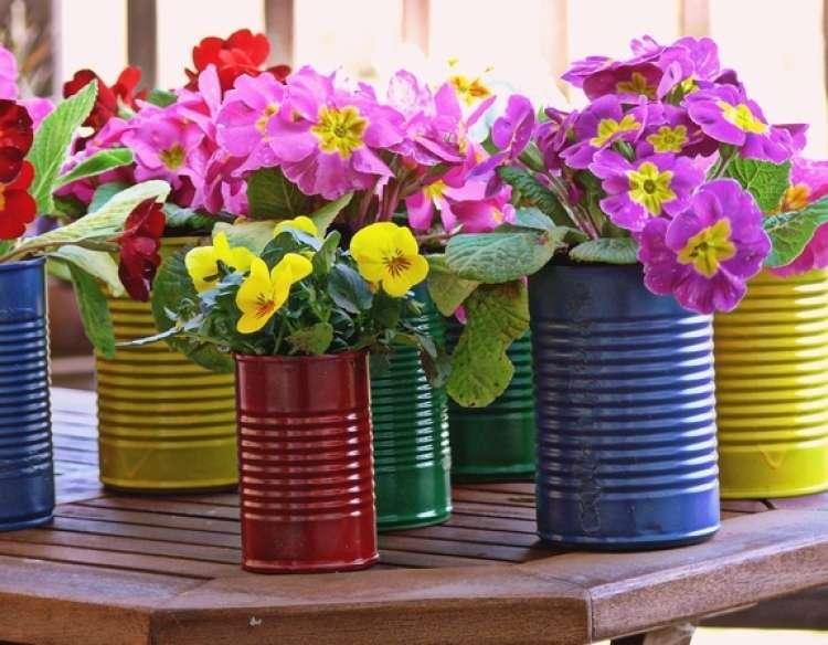 Flori de primavara la ghiveci - Când toamna începe să se așeze peste grădină ce ai