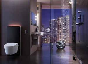Modul sanitar pentru WC Geberit Monolith - Sisteme de instalare Geberit Monolith