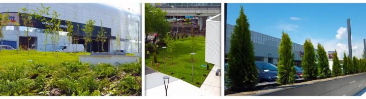 Bucharest One - amenajare spatii verzi - Proiecte RULOURI DE GAZON