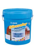 Vopsea silicatica permeabila la vaporii de apa - Silexcolor Pittura (Silexcolor Paint) - Mortare de zidarie