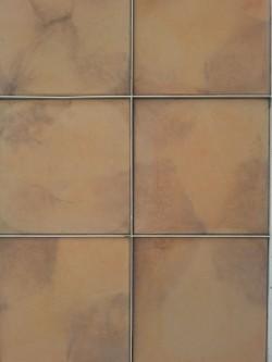 Model pavaj Terra - Pavele decorative