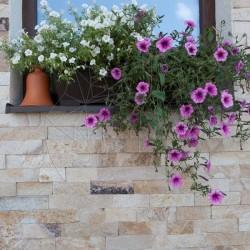 Ardezie Rhodos 5cm x LL - Piatra naturala decorativa rhodos gneiss