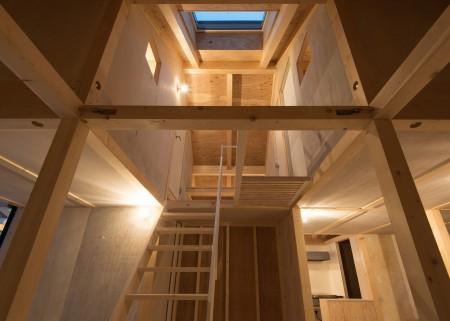 Structura din lemn adaposteste o casa in alta casa - Structura din lemn adaposteste o casa in alta casa