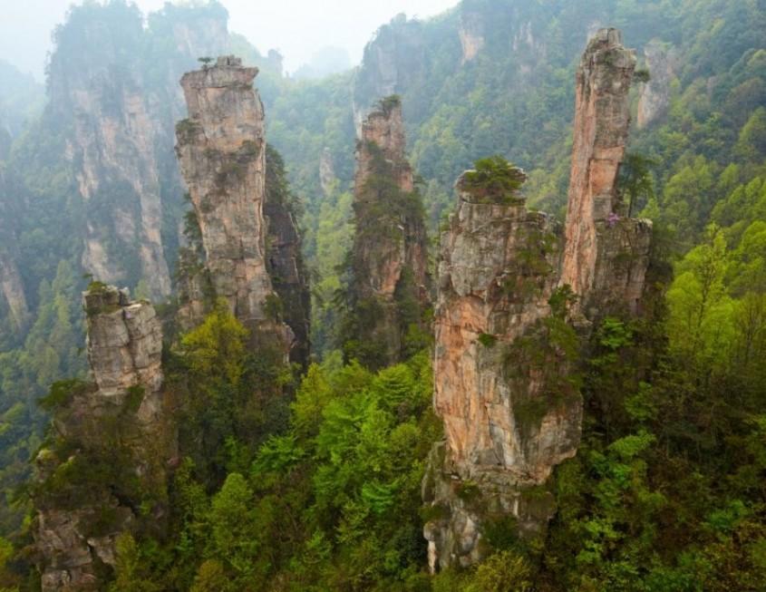 China plantează 6 6 milioane de hectare de păduri noi - aproape cât mărimea Irlandei -