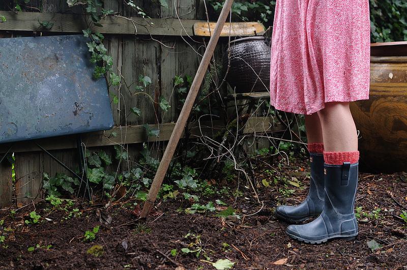 Curatarea gradinii - Luna februarie în gradină – ce ai de făcut?