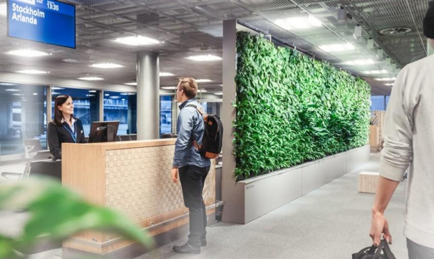 Peretele vegetal Naava - Care este legătura dintre un perete vegetal și inteligența artificială?