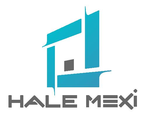 Hale Mexi - Prezentare - MEXI GROUP