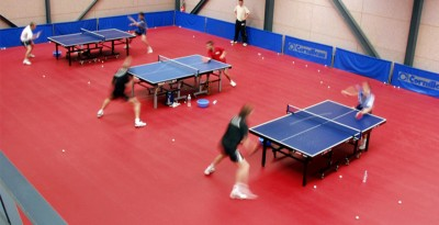 Taraflex Table Tennis - Modele pardoseala