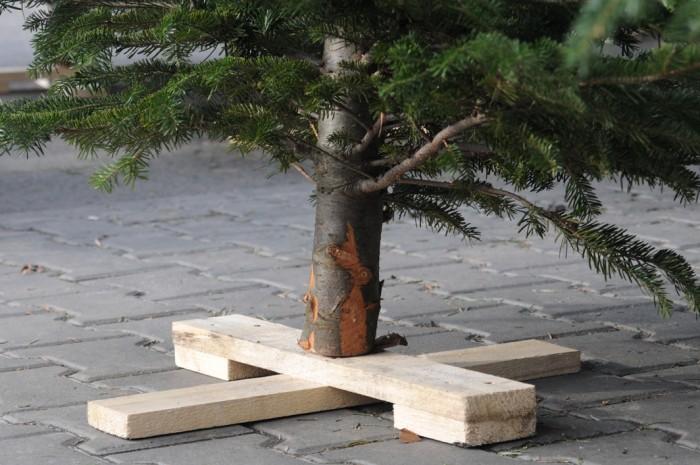 Cateva idei practice pentru suporturile de pomi de Craciun - Cateva idei practice pentru suporturile de pomi de Craciun