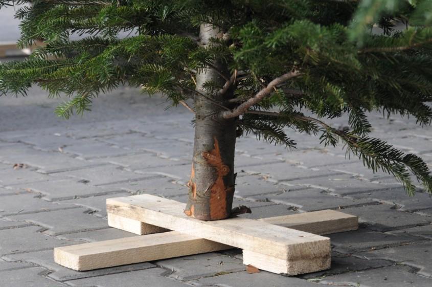 Cateva idei practice pentru suporturile de pomi de Craciun - Cateva idei practice pentru suporturile de
