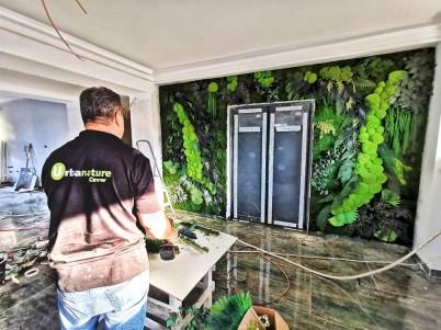Perete verde - imagine din timpul realizarii - Proiecte URBANATURE