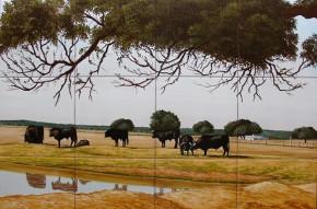 Cireada de tauri - Faianta pictata pentru living