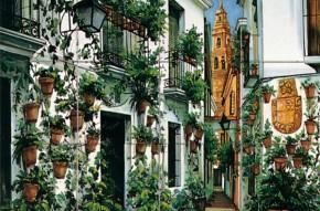 Strada cu cladiri vechi si plante ornamentale - Faianta pictata pentru living