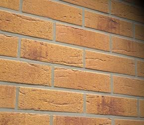 Caramida aparenta R287NF - Caramida aparenta Feldhaus Klinker
