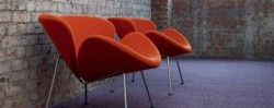 Mocheta Modern Poliamida Koty Design Colectia Premium Mc-10-445 - Mocheta