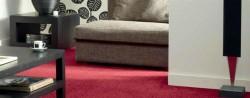 Mocheta Unidesign Poliamida Koty Design Colectia Premium Mc-15-160 - Mocheta