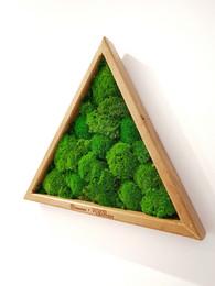 Tablou in forma de triunghi cu licheni - Tablouri cu muschi si licheni stabilizati