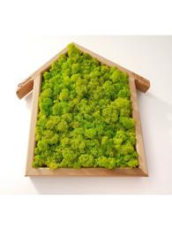 Tablou in forma de casa cu licheni - Tablouri cu muschi si licheni stabilizati