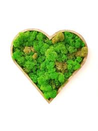 Tablouri in forma de inima cu muschi si licheni - Tablouri cu muschi si licheni stabilizati
