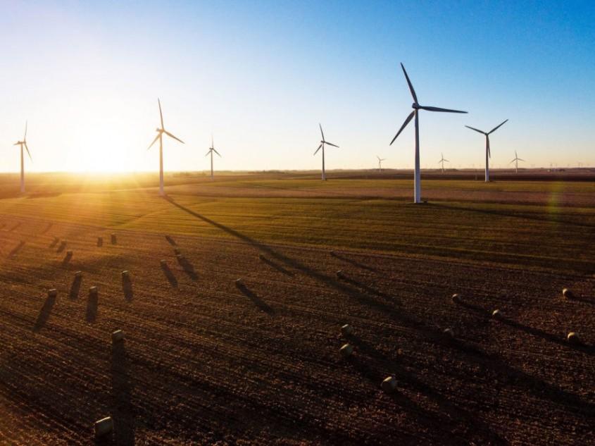 Compania Google semnează contracte noi pentru consumul de energie - Compania Google semnează contracte noi pentru