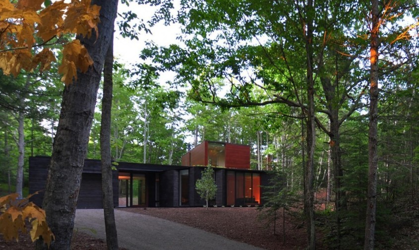 O casa cu acoperisuri verzi se ascunde de minune in padure - O casa cu acoperisuri