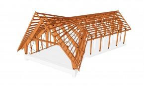 Sala Polivalenta Moeciu  - Proiectare structuri de lemn