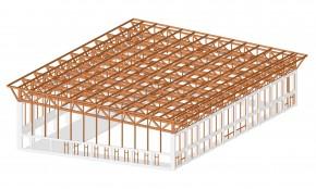 Bazin Olimpic Brasov - Proiectare structuri de lemn