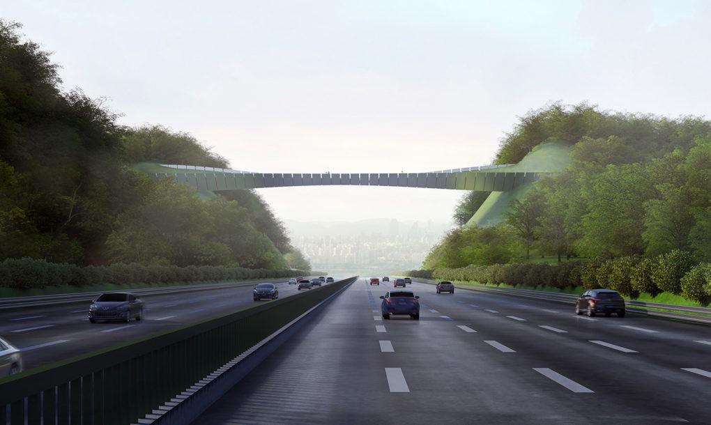 Yangjaegogae-Eco-Bridge-by-KILD-4-1020x610 - Un pod cu vegetație ține la distanță animalele sălbatice de o autostradă aglomerată