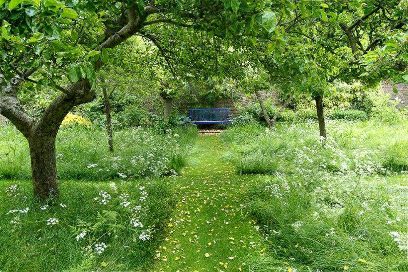 Sfaturi pentru grădina de la cel mai celebru peisagist englez – partea 1 - Sfaturi pentru