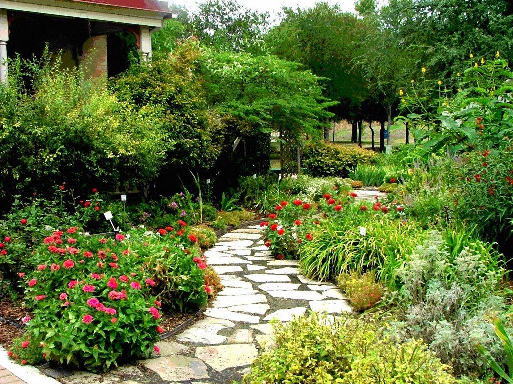 Coloritul abundent al plantelor mediteraneene creaza un contrast  cu aleea pietruita - Gradina de tip mediteranean