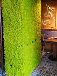 Perete verde intr-un restaurant - Pereti verzi cu muschi si licheni