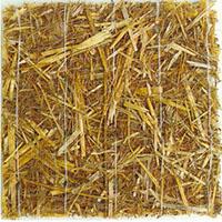 Geosaltele biodegradabile - Geosaltele