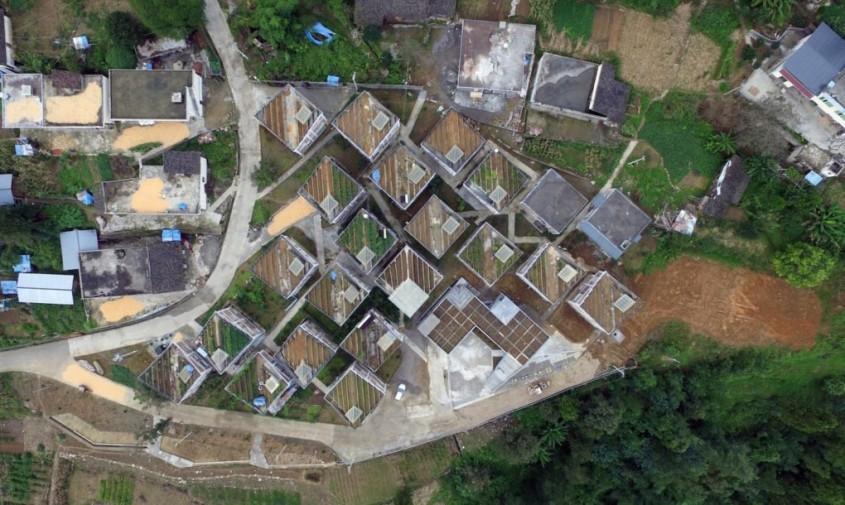 Case cu acoperișuri grădină exemplu de reconstrucție durabilă după un dezastru - Case cu acoperișuri grădină