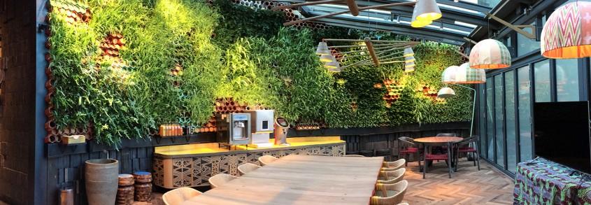Peretele unui restaurant din Londra purifică aerul și absoarbe zgomotul din interior - Peretele unui restaurant