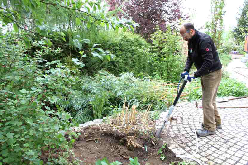 Amenajarea gradinii - Cazma profesionala
