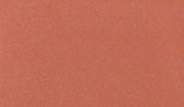 Coralline Ferro Light - Gama de culori Bricky