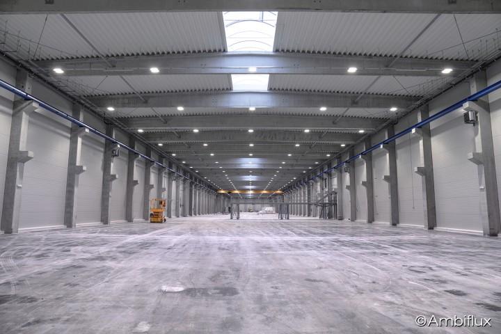 Proiect iluminat hala industriala Madrugada - Proiecte ELECTRONIC INTERACTIV