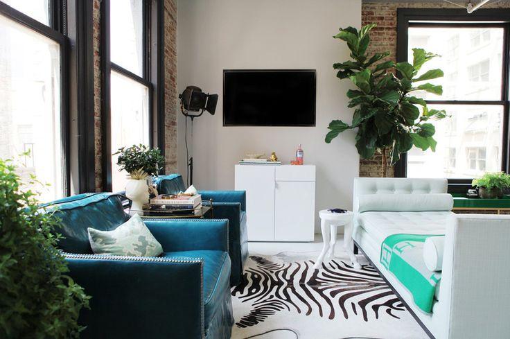 Plante de apartament - 8 sfaturi pentru camere de zi mici