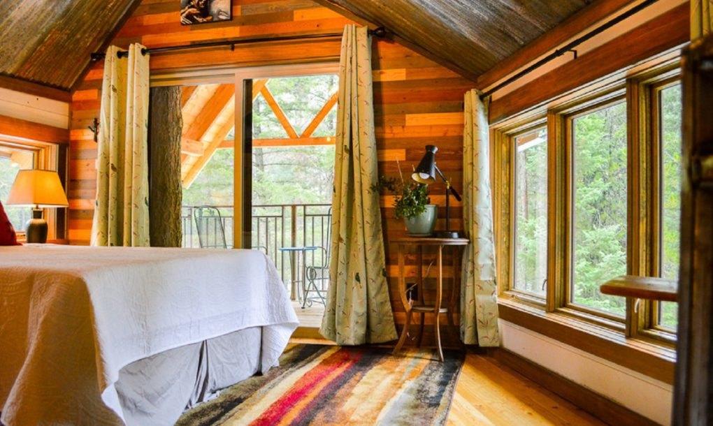 Montana Treehouse Retreat - Patru arbori cresc in interiorul acestei cabana