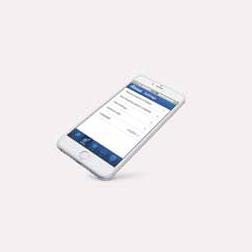 Acces prin smart phone - Sistemul de control RD5