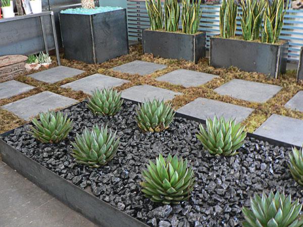 Plante suculente - Rocărie, flori și pietriș - 3 elemente pentru un design unic în grădină