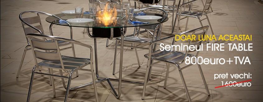 Biosemineul FireTable - un efect vizual elegant si modern - Biosemineul FireTable - un efect vizual