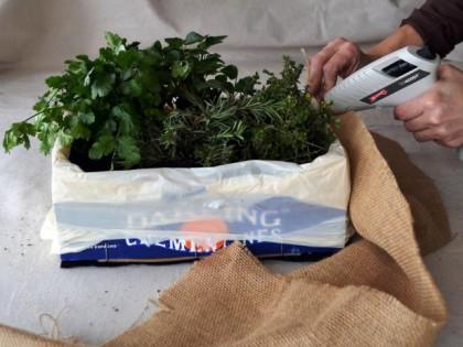 Cum se face ghiveciul pentru mirodenii - De făcut împreună cu cei mici: ghiveciul pentru ierburi aromatice