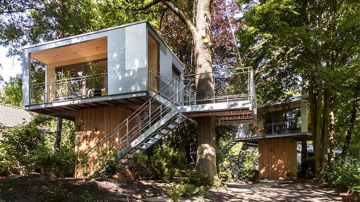 Casa in copac - Casa in copac