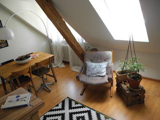 Mini-apartament amenajat intr-o mansarda - Mini-apartament amenajat intr-o mansarda