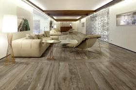 Gresie pentru interior Woodmania - Gresie pentru interior RAGNO